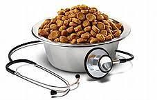 מזון רפואי
